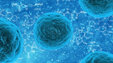 Stem Cell Reprogramming